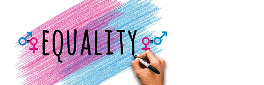 Encuesta Igualdad SL.jpg