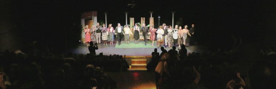 Teatro Zaidín SL.jpg